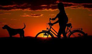 Cycliste et son chien promenade soleil couchant
