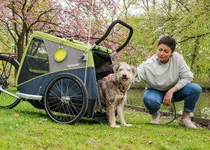 Croozer Dog XL Bruuno remorque chien
