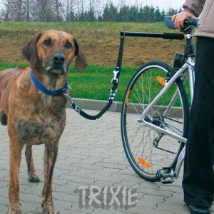 Laisse trixie pour chien à vélo