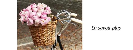 Panier sur guidon de vélo en rotin Darcy L Basil pour vélo femme