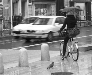 Circuler à vélo sous la pluie : les conseils et les housses de protection étanches!