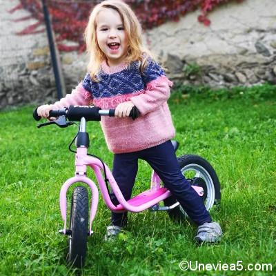 Draisienne rose avec frein Puky Lillifee LR 1L BR