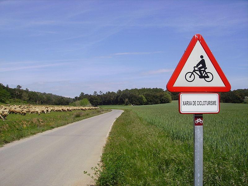 Les résultats du concours sur les «voyages à vélo»