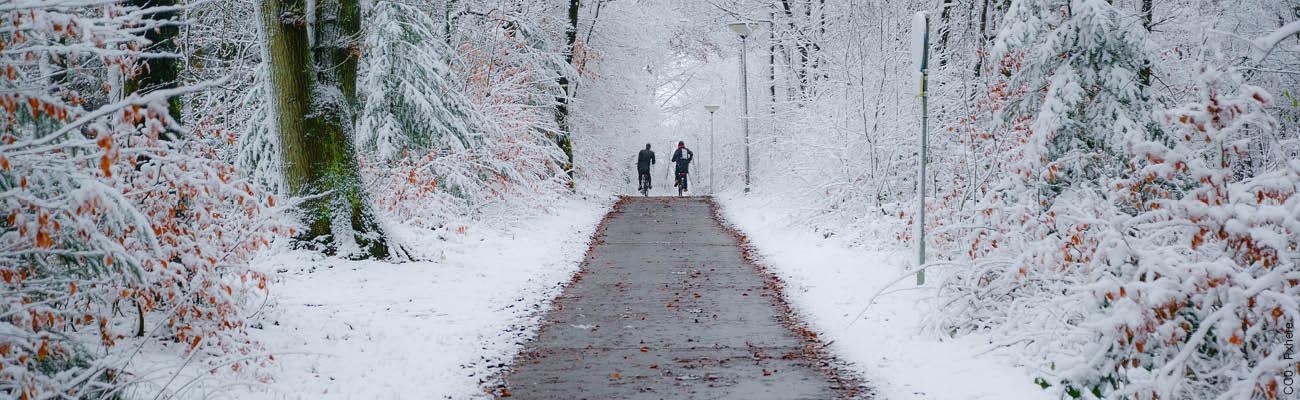 Le vélo en hiver : assurer sa conduite