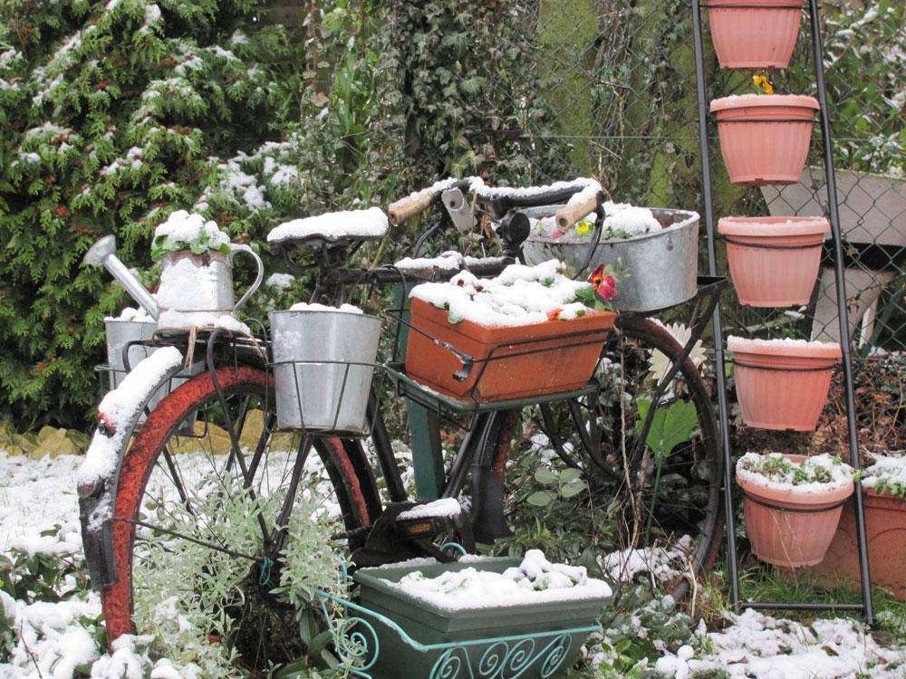 Concours photo « L'insolite dans le vélo » : Le vélo jardinière