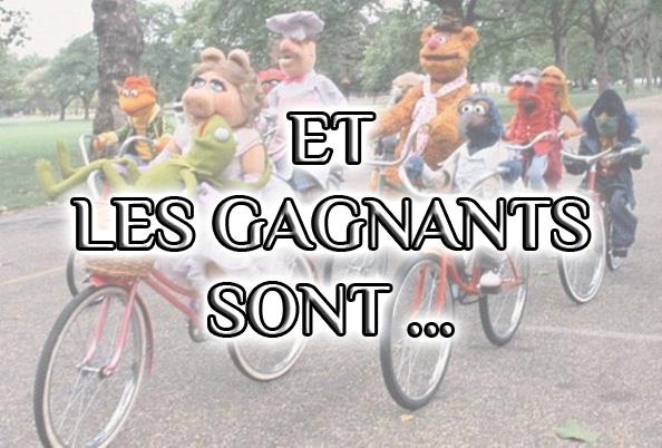 """Concours photo """"l'insolite et le vélo"""": Résultats pour la session Février-Mars"""
