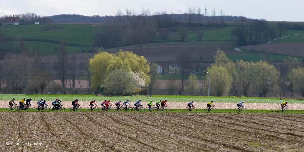 Le tour du siècle : le centenaire du Tour des Flandres, la mythique compétition de cyclisme belge