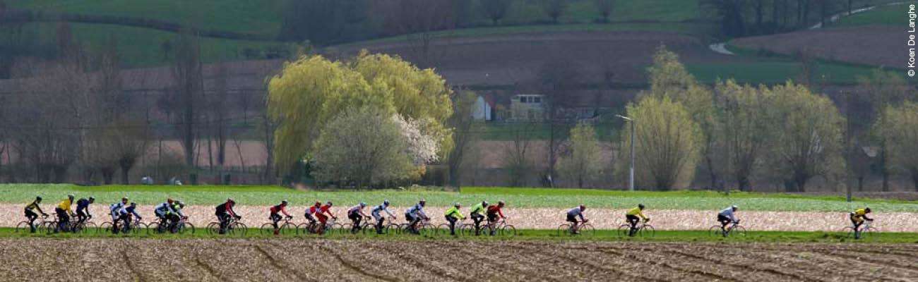 Le Tour des Flandres, vitrine du prestigieux cyclisme belge