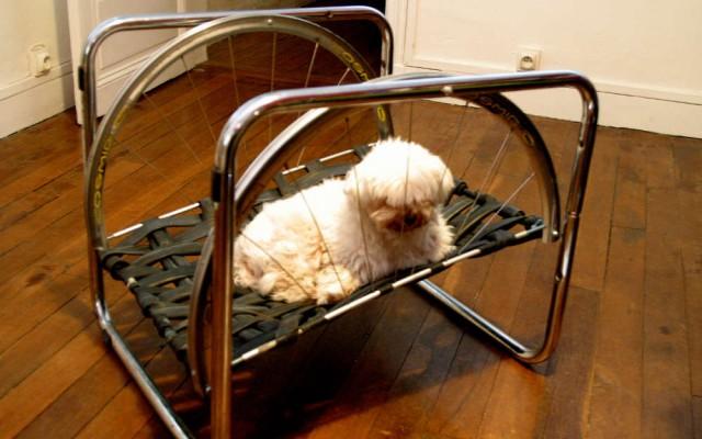 photo insolite autour du v lo un meuble v lo citycle. Black Bedroom Furniture Sets. Home Design Ideas