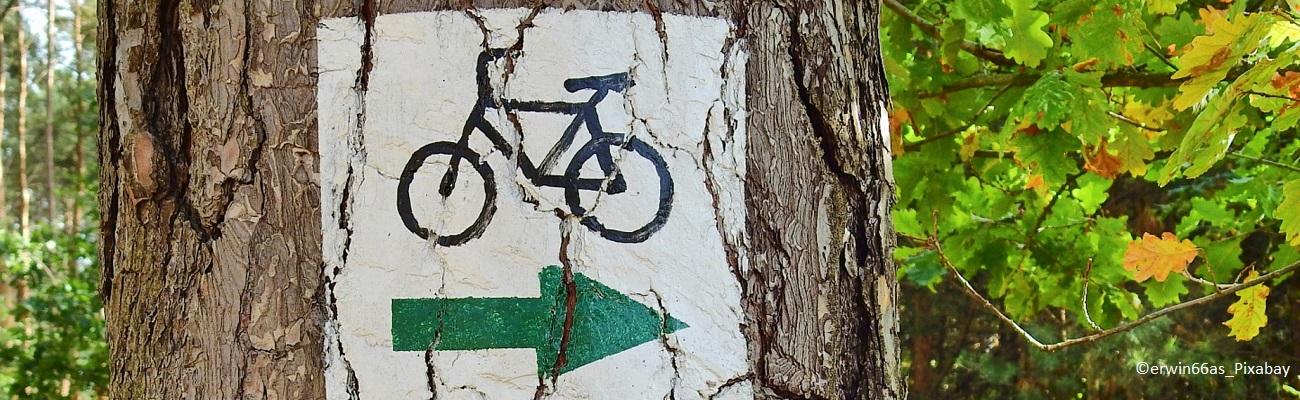 Les villes qui ont profité des aménagements vélo post-confinement
