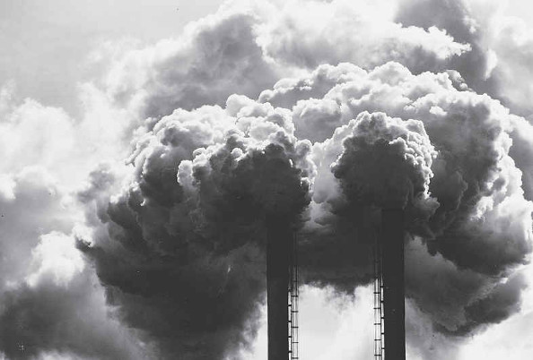 Environnement : Bientôt il sera trop tard