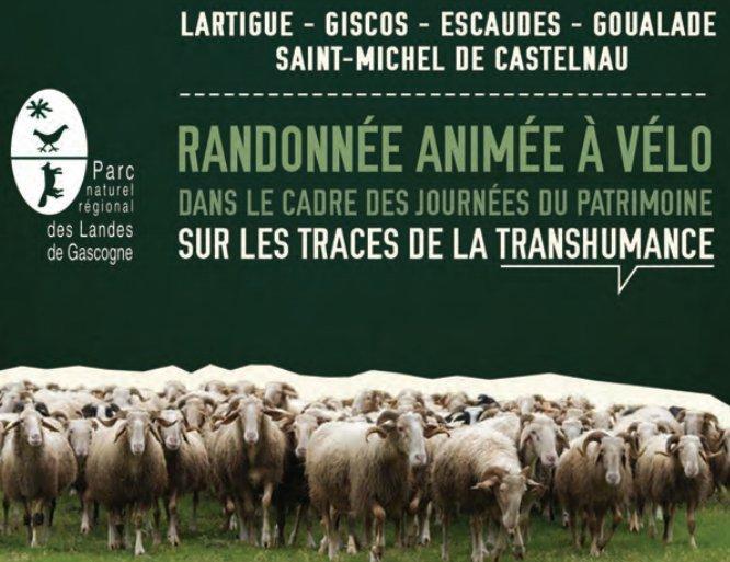 le-parc_a_velo_transhumance