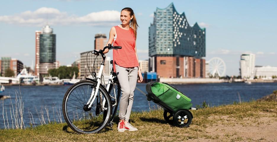 Choisir le châssis de caddie Andersen pour vélo