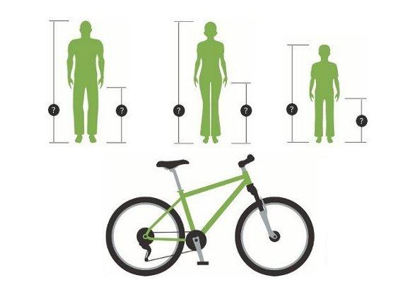 Comment choisir la taille de son vélo par rapport à celle du cycliste ?