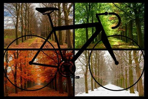 Québec : comment faire du vélo toute l'année