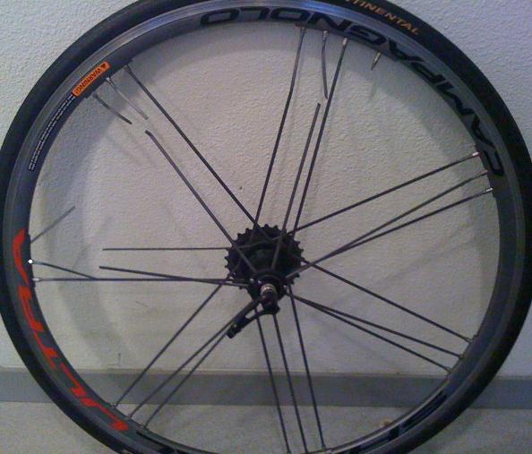 Conseils pratiques: changer le rayon d'une roue de vélo