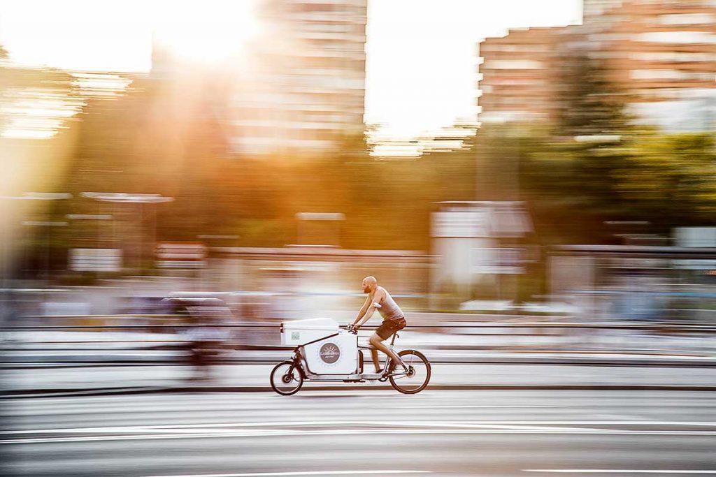 vélo cargo biporteur