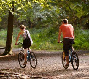 Cyclistes faisant du cyclotourisme