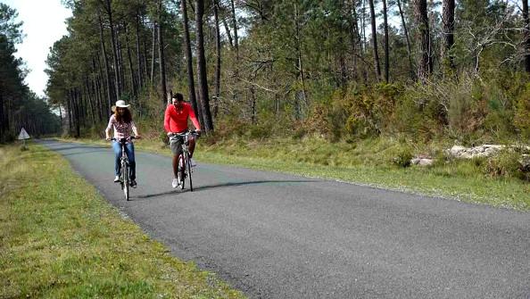 Le plaisir de faire du vélo en campagne