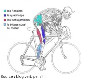 Perdre du poids en adoptant la pratique du vélo