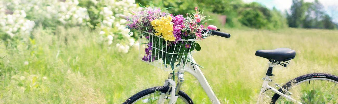 Comment se protéger du pollen à vélo