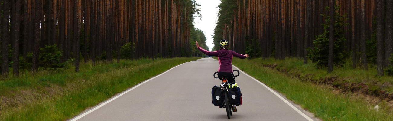 A Bee'Cyclette : récit d'un voyage à vélo «pour parler abeilles»