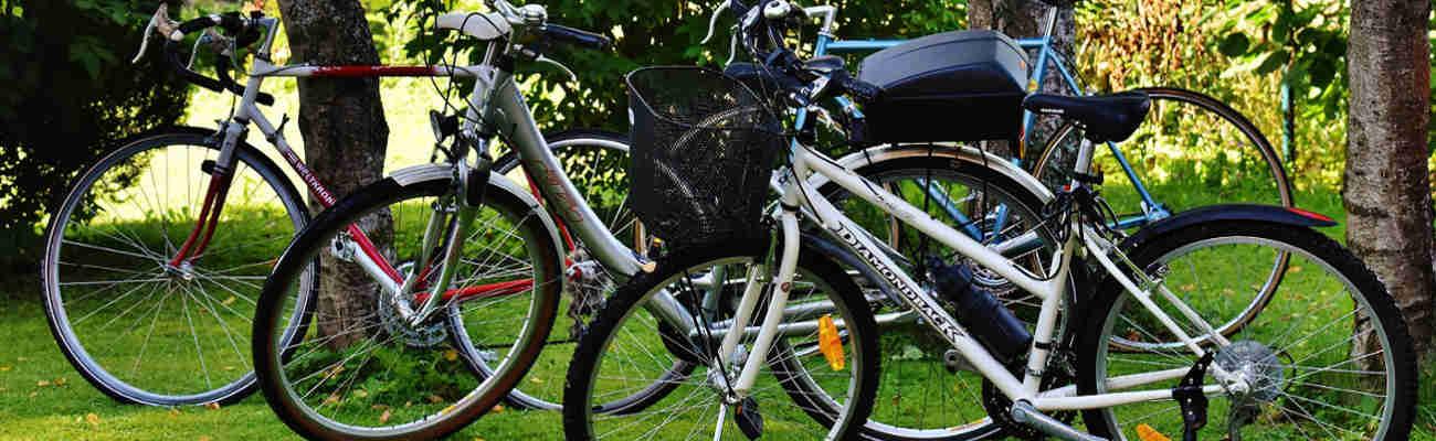 Mobilités douces et climat, le vélo pour sauver la planète