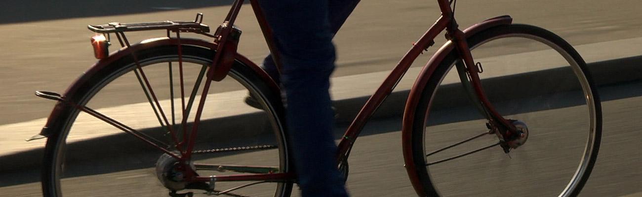 « La Reine bicyclette » : l'histoire du lien qui unit les français au vélo