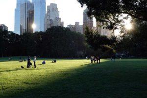 Central Park, un lieu idéal pour faire du vélo