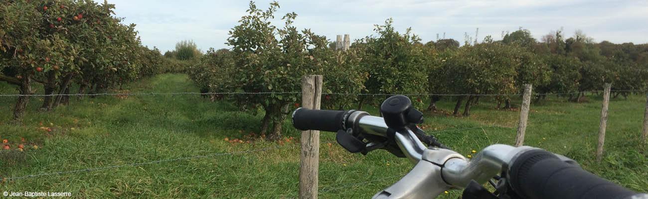 Véloroute Val de Seine : une balade à vélo bucolique