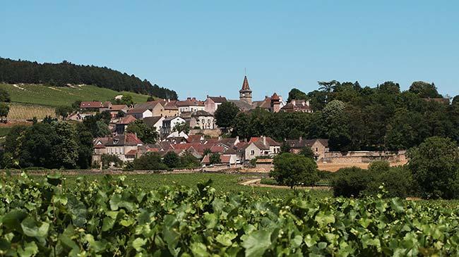 Randonnée à vélo dans les vignobles de Bourgogne