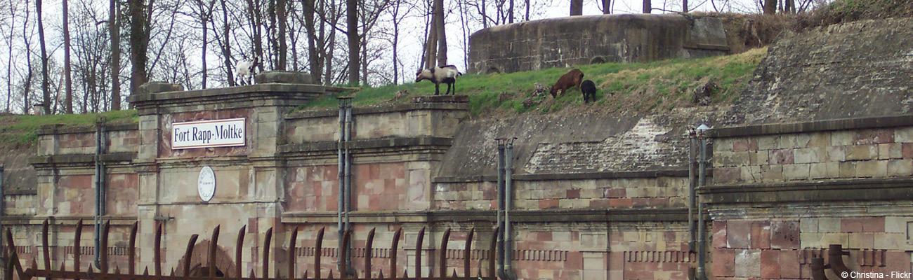 La Piste des Forts à vélo, une route historique autour de Strasbourg