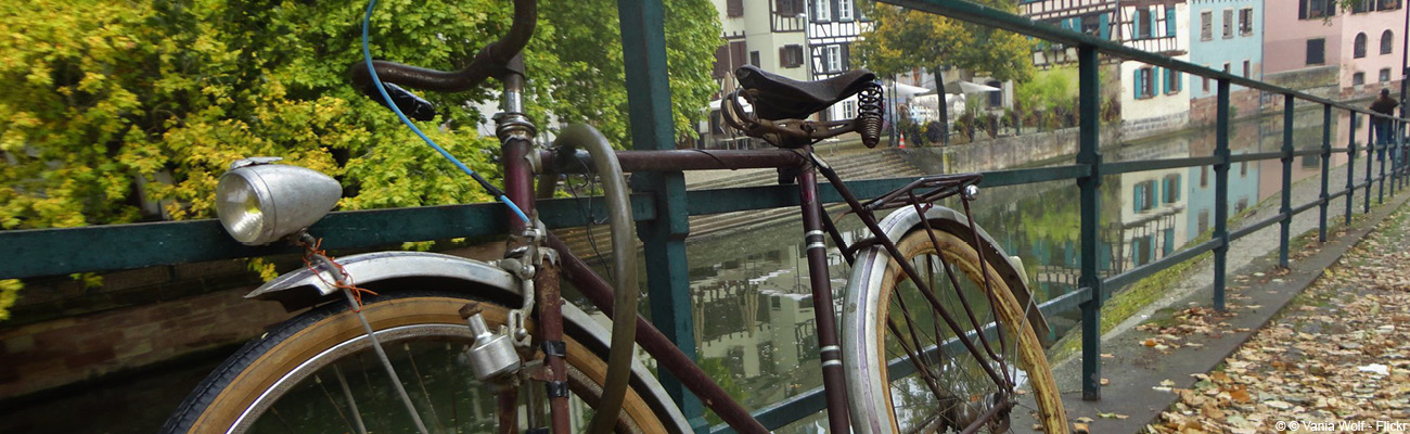 Élections municipales 2020 à Strasbourg, toujours capitale du vélo