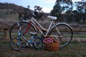 pique-nique à vélo en famille avec un panier
