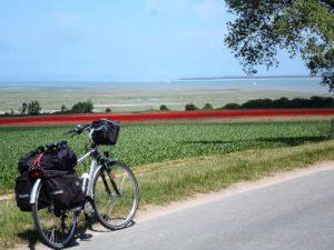 Baie de somme à vélo côté vert