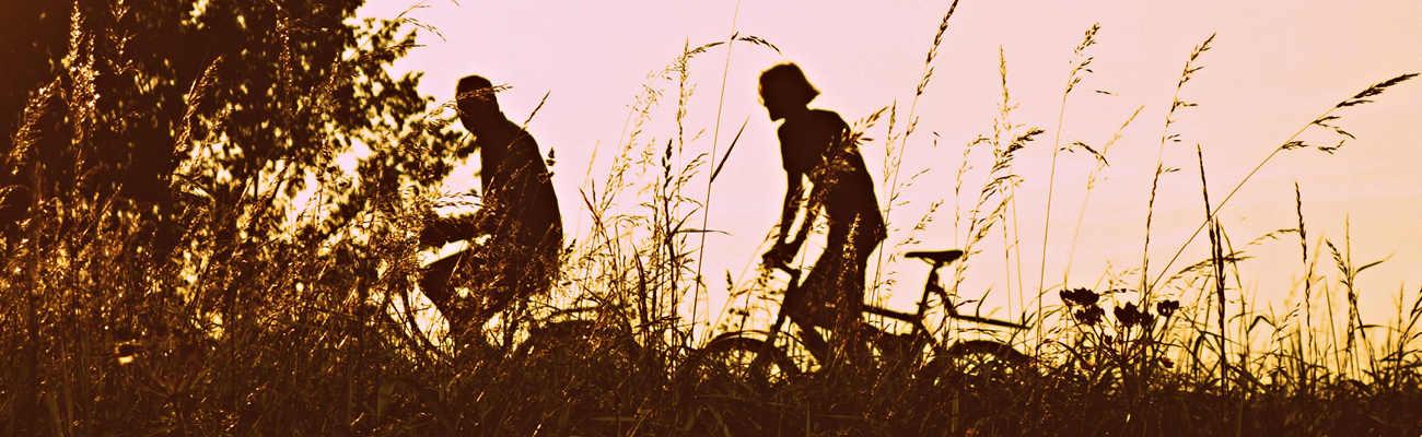Quelle assurance vélo choisir pour se protéger soi et sa monture ?