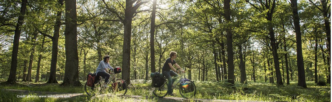 Randonnées à vélo dans les Yvelines