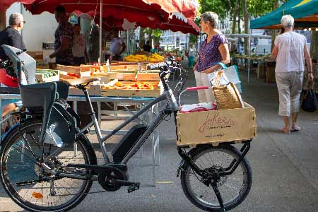 velo cargo joker bike fourche