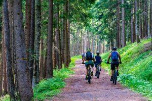 Pneus vélo voyages sentiers