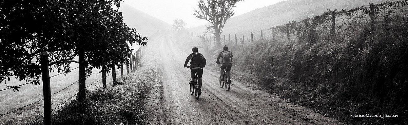 Quel pneu choisir pour un voyage à vélo ?